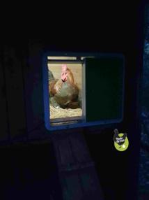la lampe s'allume 5 min avant la fermeture de la porte
