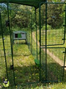Grand enclos sécurisé