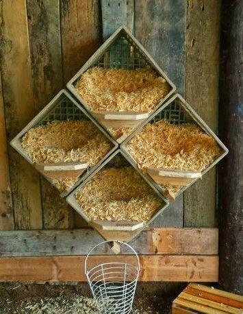 Les pondoirs pour poules fait maison for Abreuvoir lapin fait maison