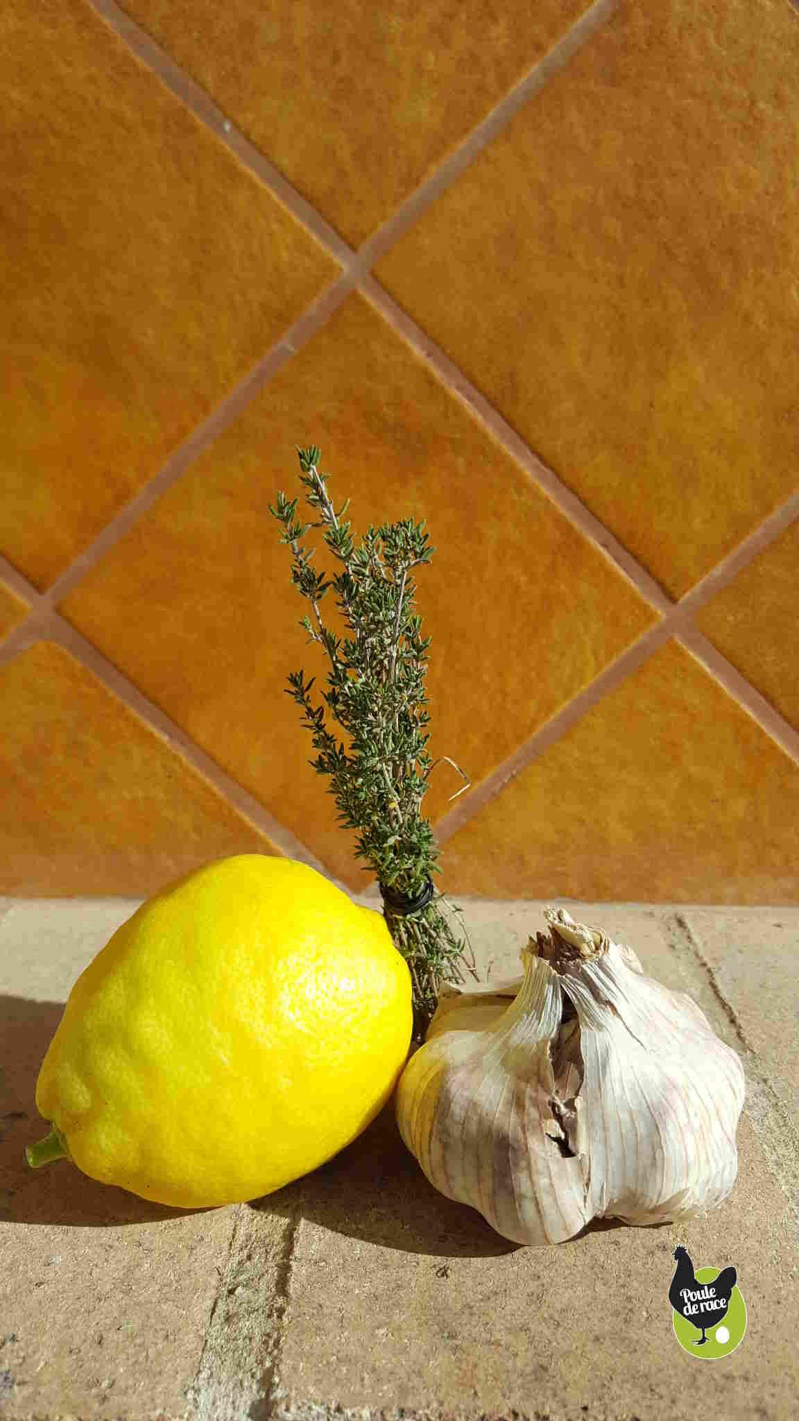 recettes d'huiles essentielles pour vos poules