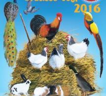 20eme exposition des animaux de la basse-cour