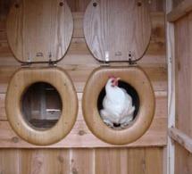 """Les pondoirs pour poules """"fait maison"""""""