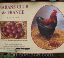 Fête europeenne de la poule de Marans
