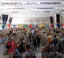 19ème Exposition Internationale d'Animaux de basse-cour